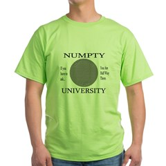 Numpty University Ash Grey Green T-Shirt