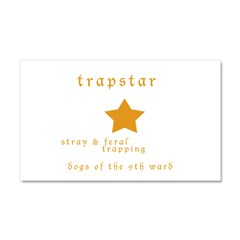 Trapstar: stray and feral tra Car Magnet 20 x 12