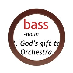 Bass Definition Jewelry Case