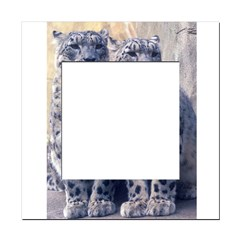 Twin Snow Leopard Cubs Square Locker Frame