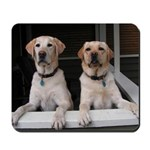 Aug Lab of the Month Mousepad